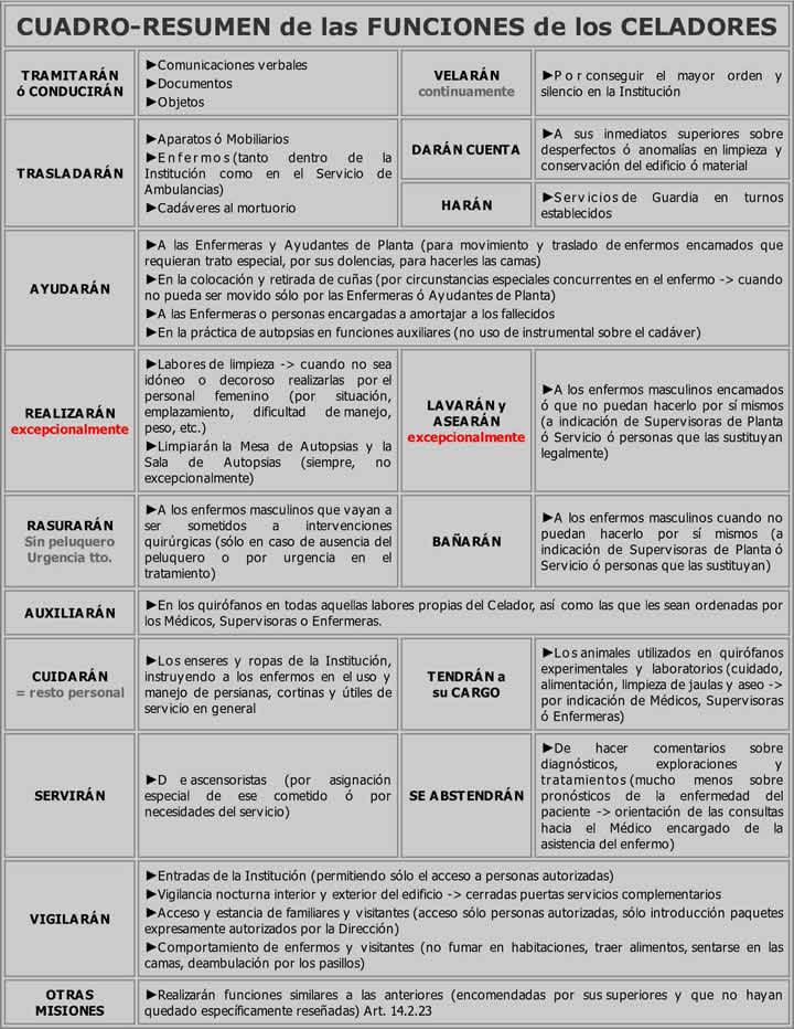 Funciones del Personal Estatutario de los Servicios de Salud ...