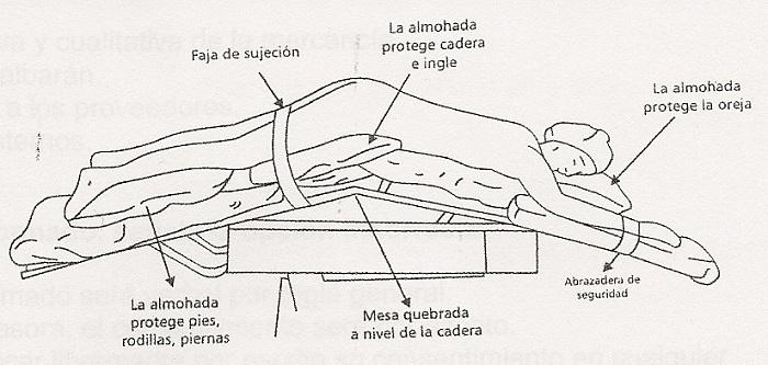 Auxiliar de enfermería online: Posiciones Anatómicas I.