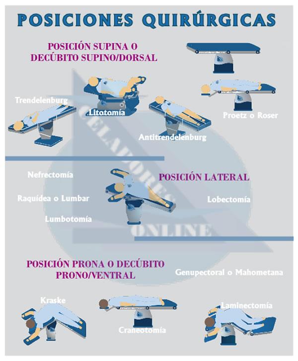 Posiciones Anatómicas Quirúrgicas Y No Quirúrgicas Esquemas Opossanidad